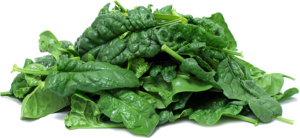 Spinach PNG Clipart PNG Clip art