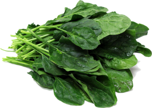 Spinach PNG File PNG Clip art