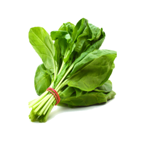 Spinach PNG Free Download PNG Clip art
