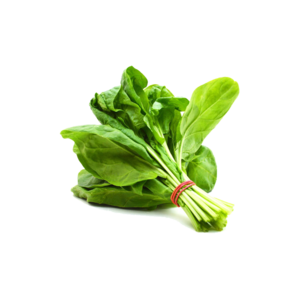 Spinach PNG HD PNG Clip art