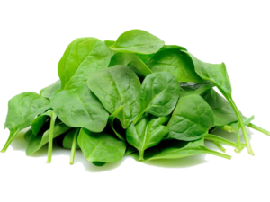 Spinach PNG Image PNG clipart