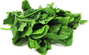 Spinach Transparent PNG PNG Clip art
