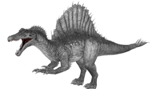 Spinosaurus Download PNG Image PNG Clip art