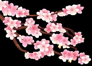 Spring Flower PNG Image PNG Clip art