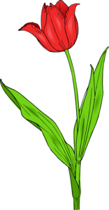 Spring Flower PNG Picture PNG Clip art