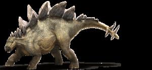 Stegosaurus PNG File PNG Clip art