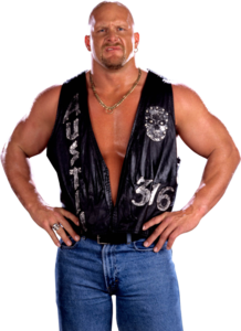 Stone Cold PNG Image PNG Clip art