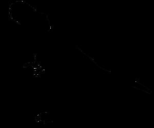 T Rex PNG Image PNG Clip art