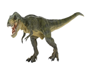 T Rex Transparent Images PNG PNG icon