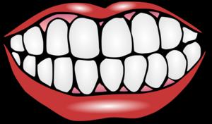 Teeth PNG PNG Clip art