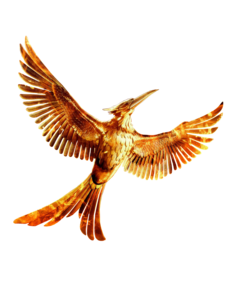 The Hunger Games PNG HD PNG Clip art