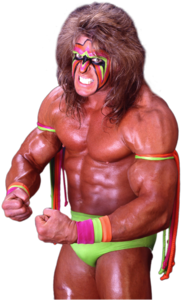 The Ultimate Warrior PNG File PNG image