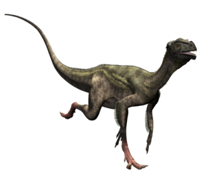 Theropod PNG Picture PNG Clip art