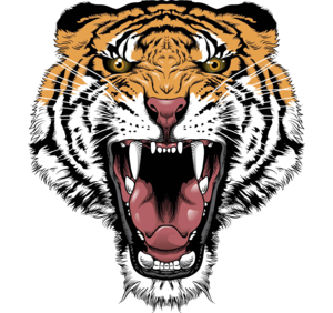 Tiger Face Transparent PNG PNG Clip art