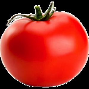 Tomato Clip Art PNG PNG Clip art
