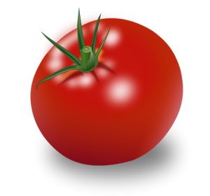 Tomato Vector Free PNG PNG Clip art