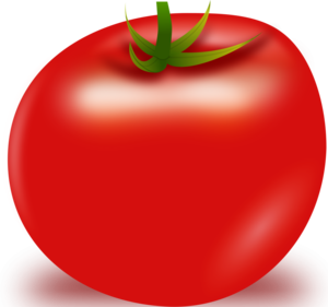 Tomato Vector PNG PNG Clip art