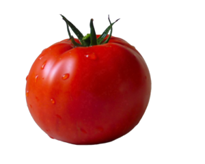 Tomatoes PNG PNG Clip art