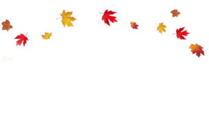 Transparent Fall Leaves Border PNG PNG Clip art
