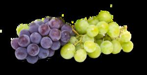 Transparent Grapes PNG PNG Clip art