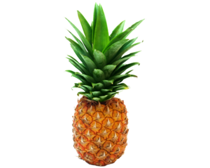 Transparent Pineapple PNG PNG Clip art