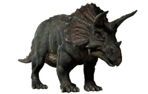 Triceratop PNG Image PNG Clip art