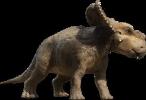 Triceratop PNG Photos PNG Clip art