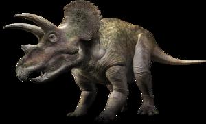 Triceratop PNG Transparent PNG Clip art