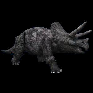 Triceratop Transparent PNG PNG Clip art