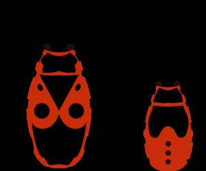 True Bug PNG Clipart PNG Clip art