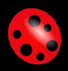 True Bug PNG Free Download PNG Clip art