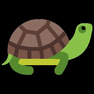 Turtle PNG Photos PNG Clip art