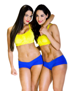 Twins PNG Transparent Image PNG clipart