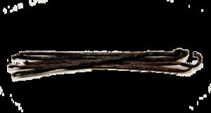Vanilla Bean PNG Transparent PNG Clip art