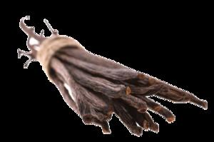 Vanilla Bean Transparent PNG PNG Clip art