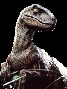 Velociraptor PNG File PNG Clip art