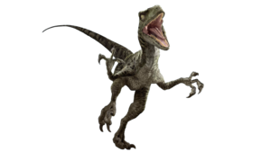 Velociraptor PNG Photo PNG Clip art