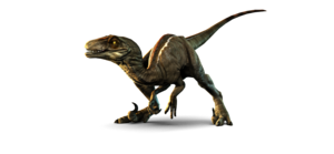 Velociraptor PNG Picture PNG Clip art