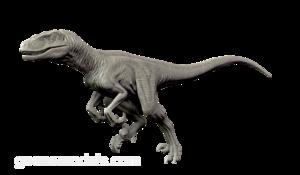 Velociraptor PNG Transparent PNG Clip art