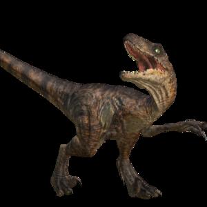 Velociraptor Transparent Background PNG Clip art