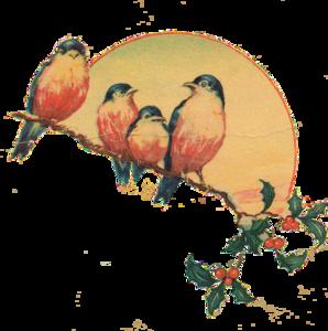 Vintage PNG Clipart PNG Clip art