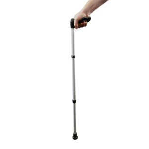 Walking Stick PNG HD PNG icon