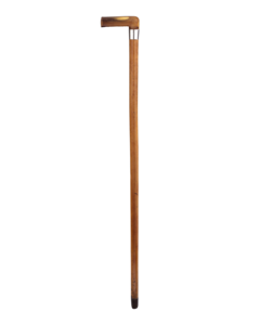 Walking Stick Transparent Background PNG Clip art