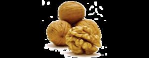 Walnuts PNG Clipart PNG Clip art