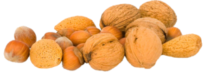 Walnuts PNG File PNG Clip art