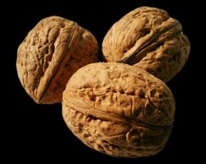 Walnuts PNG Free Download PNG Clip art