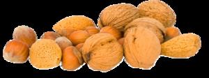Walnuts PNG Photos PNG Clip art