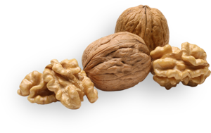 Walnuts PNG Picture PNG Clip art