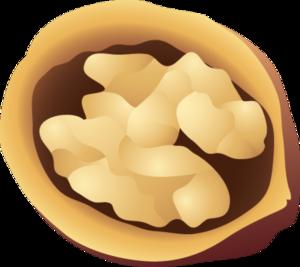 Walnuts Transparent Background PNG Clip art