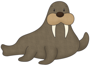 Walrus PNG Free Download PNG image